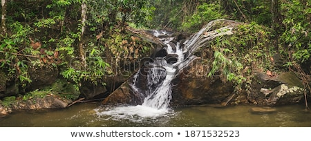 small beautiful waterfall in the forest phuket thailand stock photo © galitskaya