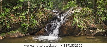 vízesés · kicsi · sűrű · trópusi · esőerdő · természet - stock fotó © galitskaya