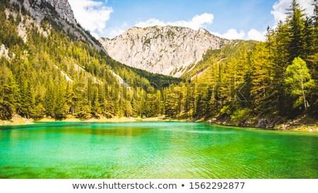 View of Alps mountain, Styria, Austria Stock photo © borisb17