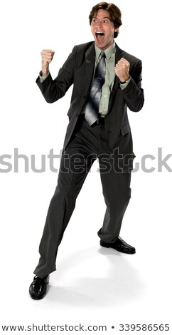 A businessman in a fighting stance. Stock photo © photography33