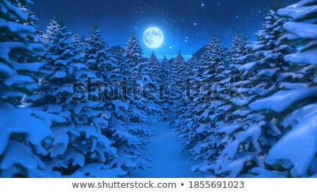 christmas fairytale stock photo © tannjuska