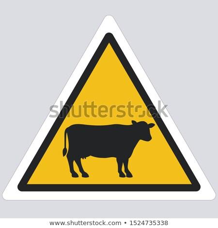 Precaución alerta toro signo algo no Foto stock © Krisdog