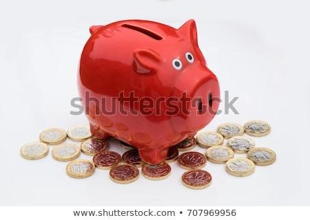 貯金 ポンド 目 にログイン 笑顔 ストックフォト © idesign