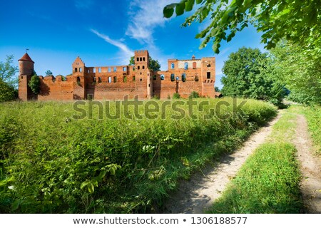 Medieval knight on an old damaged road. Stock photo © Nejron