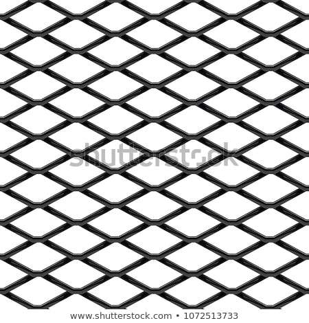 Wire Netting Texture Stock photo © rghenry