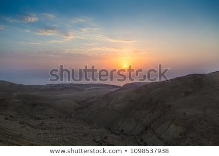 Dode zee Israël strand hemel wolken Stockfoto © Zhukow