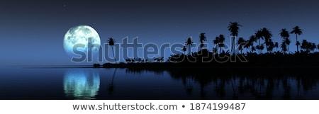 3D nachtelijke hemel tropische zee 3d render maan Stockfoto © kjpargeter