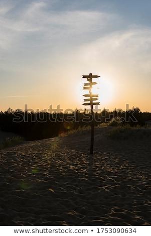 Wody kierunku podpisania wyschnięcia pustyni piasku Zdjęcia stock © stevanovicigor