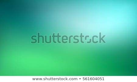 A green gradient background Stock photo © bluering