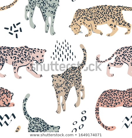 african leopard silhouette Stock photo © lienkie