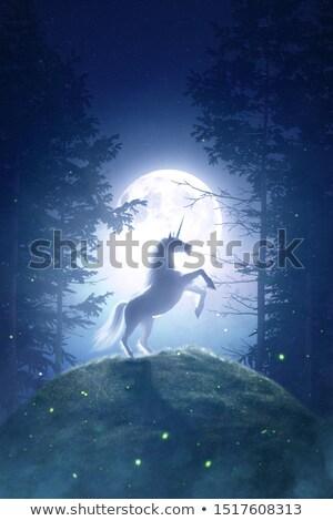 luz · de · la · luna · ilustración · luna · estrellas · silueta · sueno - foto stock © adrenalina