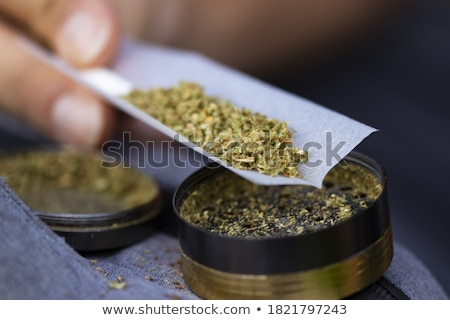 rolling a joint  stock photo © wollertz