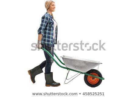 Meisje voortvarend kruiwagen natuur tuin leuk Stockfoto © IS2