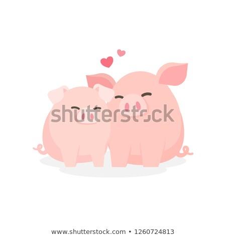çiftlik · domuzlar · ışık · grup · bacaklar · et - stok fotoğraf © adrenalina