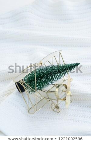 Piano evergreen albero Natale felice foresta Foto d'archivio © neirfy