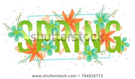 Primavera venta banner plantilla rosa color Foto stock © Natali_Brill