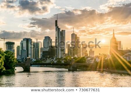 Frankfurt panorama hoofd- rivier water stad Stockfoto © benkrut