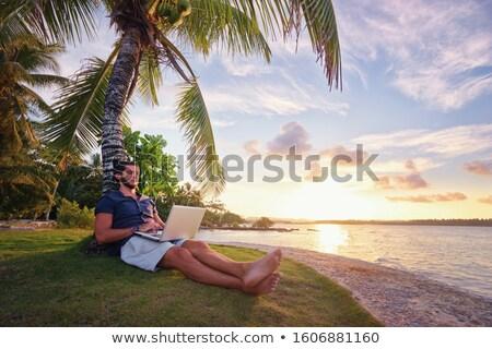 человека пальмами молодые рубашки пляж Blue Sky Сток-фото © curaphotography