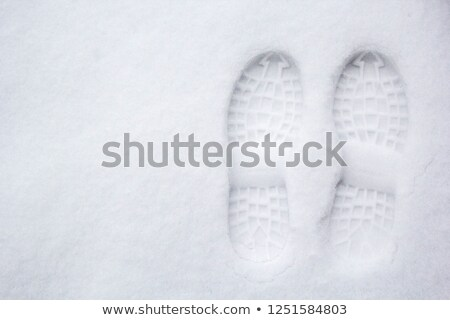 First footsteps in new snow Stock photo © HerrBullermann