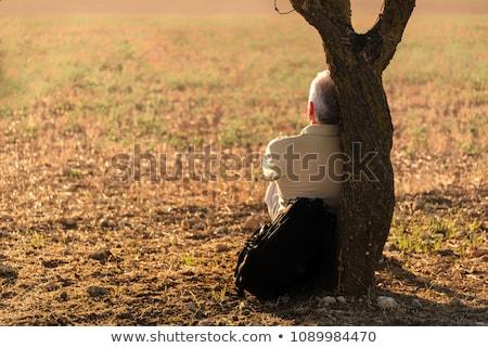 Adam beyaz rahatlatıcı ağaç gülümseme çim Stok fotoğraf © photography33