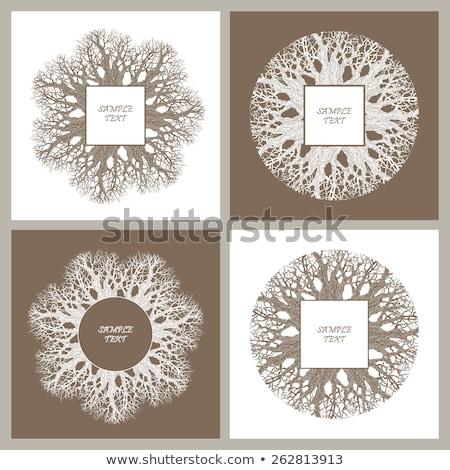 Kleurrijk symmetrisch abstract cirkel patroon Stockfoto © latent