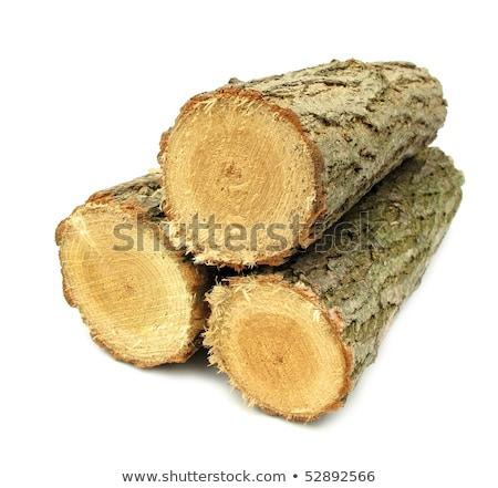 Drewna tarcica krótki tekstury drewna Zdjęcia stock © dacasdo