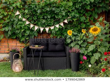Rood metaal stoelen groen gras rij omhoog Stockfoto © searagen