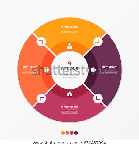 Cirkel charts ingesteld vijf zwart wit futuristische Stockfoto © fixer00