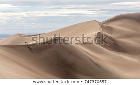 песчаная дюна мнение гребень Blue Sky небе пейзаж Сток-фото © nito