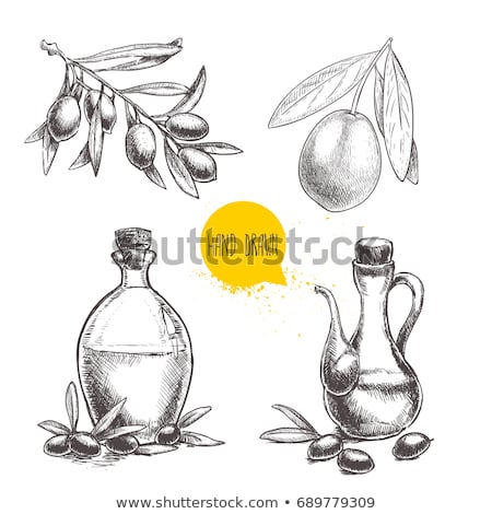 ekstra · zeytinyağı · zeytin · zeytin · beyaz - stok fotoğraf © marimorena