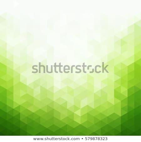 Résumé vert gris hexagone vecteur design Photo stock © vlastas