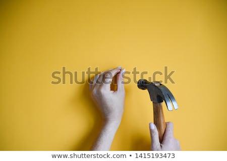 молота · ногтя · стороны · перчатки - Сток-фото © roboriginal
