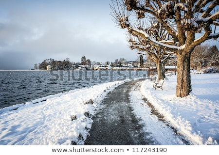 winter scenery at Tutzing Bavaria Stock photo © magann
