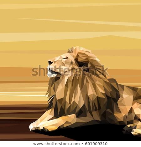 drótváz · oroszlán · részletes · illusztráció · eps10 · vektor - stock fotó © unkreatives