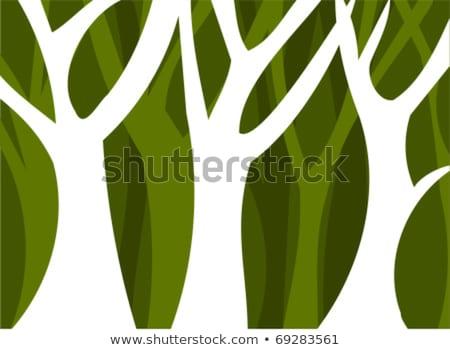 Odd tree in forest Stock photo © zurijeta