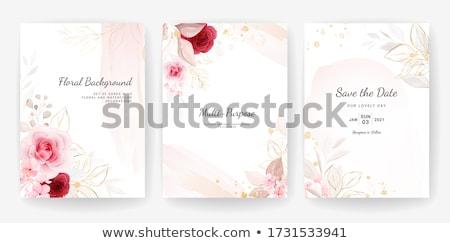 Stockfoto: Vintage · ontwerp · bloemen · geïsoleerd · witte · frame