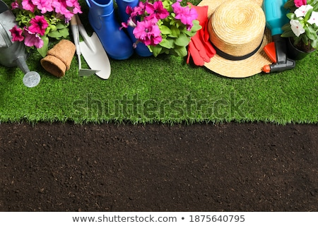 Gumboots Set With Grass And Flowers Stock photo © adamson