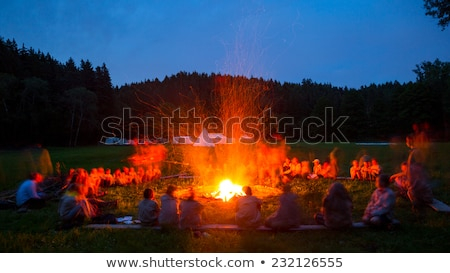 personnes · feu · de · joie · s'asseoir · nuit · lumineuses · famille - photo stock © is2