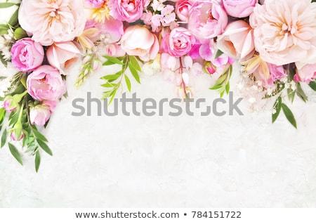 flowers frame with bokeh stock photo © adamson