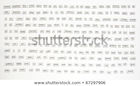 Engels woord honderd illustratie school Stockfoto © bluering
