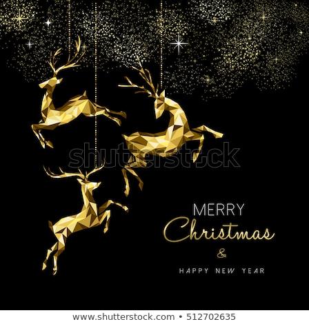 Noel · gümüş · önemsiz · şey · süs · tebrik · kartı · neşeli - stok fotoğraf © cienpies