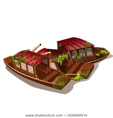 крушение разрушенный лодках изолированный белый вектора Сток-фото © Lady-Luck