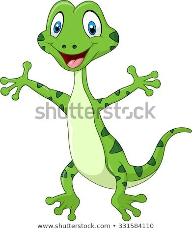Chameleon cartoon jaszczurka charakter stałego tęczy Zdjęcia stock © Krisdog