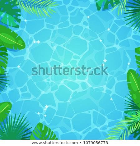 nyár · illusztráció · tutaj · trópusi · pálmalevelek · víz - stock fotó © cienpies