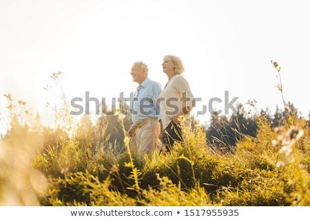 Senior couple on a sunlit meadow embracing each other Stock photo © Kzenon