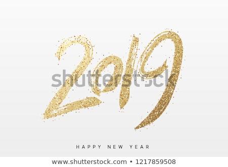 Gelukkig nieuwjaar groet varken grappig hoofd vector Stockfoto © barsrsind
