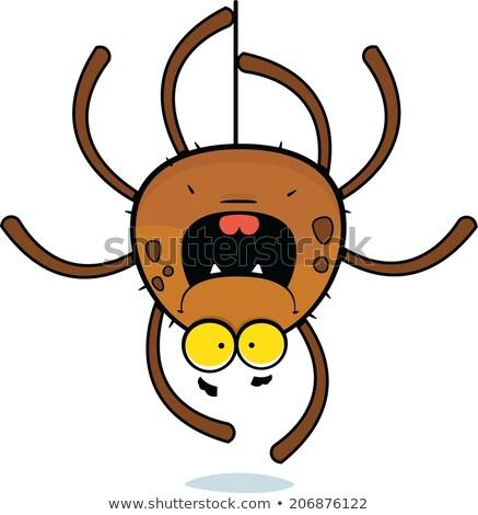 Karikatür komik örümcek gülümseme gözler eğlence Stok fotoğraf © tigatelu
