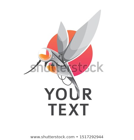 Mechanical hummingbird Stock photo © blackmoon979