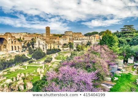 Rzym sceniczny widok z lotu ptaka ruiny Roman forum Zdjęcia stock © xbrchx