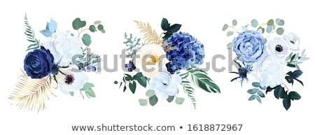 Kék virág közelkép víz eső kék lila Stock fotó © guffoto